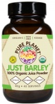 Pure Planet Organic Just Barley Powder 40gr